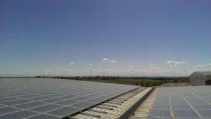 Pannelli fotovoltaici su magazzino industriale zona porto. In assoluto a causa delle polveri di materiali ferrosi e terrosi i più sporchi e ostici in assoluto nella pulizia e quindi nell'efficenza