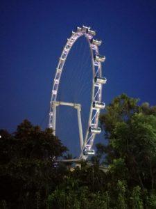 Famosa ruota panoramica (in notturna) chiamata SINGAPORE FLYER che si trova esattamente di fianco al Pit Building! Se passate da singapore fatevelo un giro anche se un po' caro ne vale la pena!